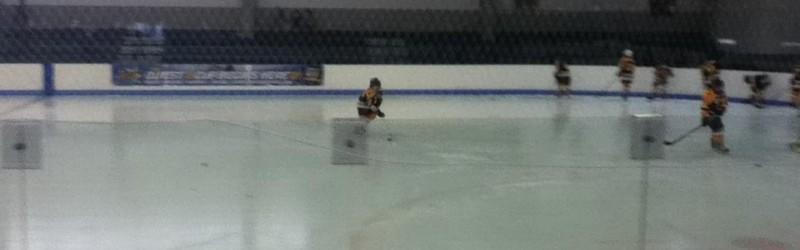 Aleixo Skating Arena