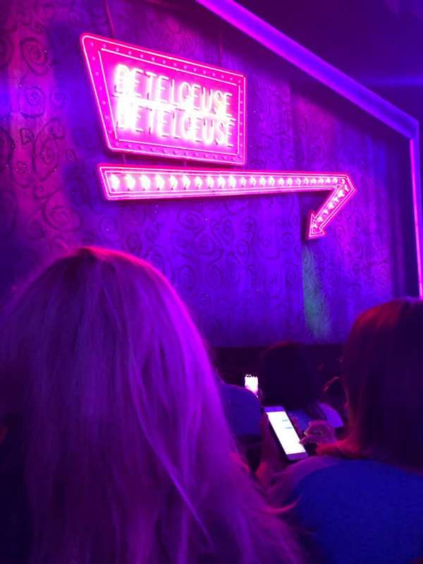 Winter Garden Theatre, section: Orchestra L, row: D, seat: 7